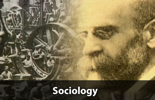 Sociology college algebra subjects